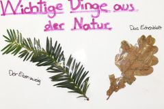 Atelier Caren Dinges- Camp Tagebuch